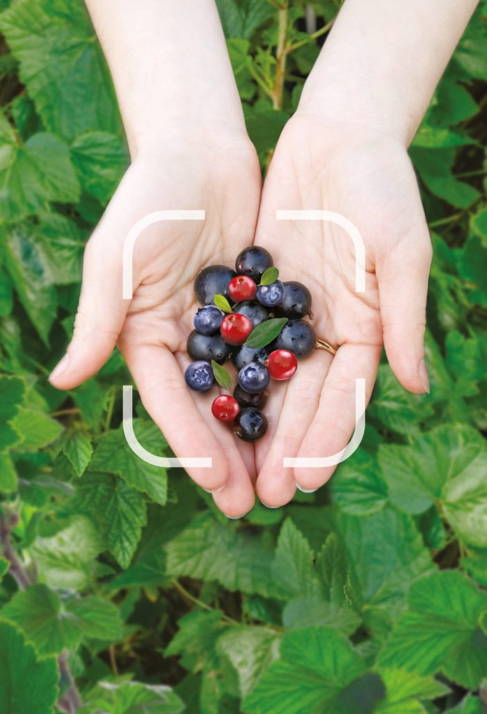 Natural fruits in hands